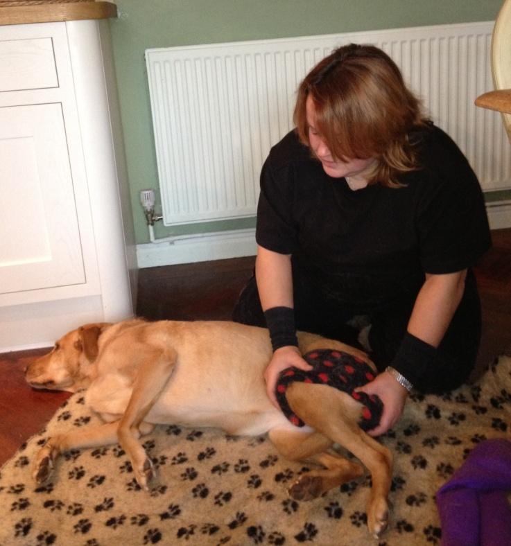 Libby having a dog massage